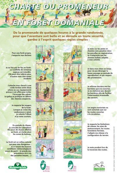 Charte du promeneur en forêt